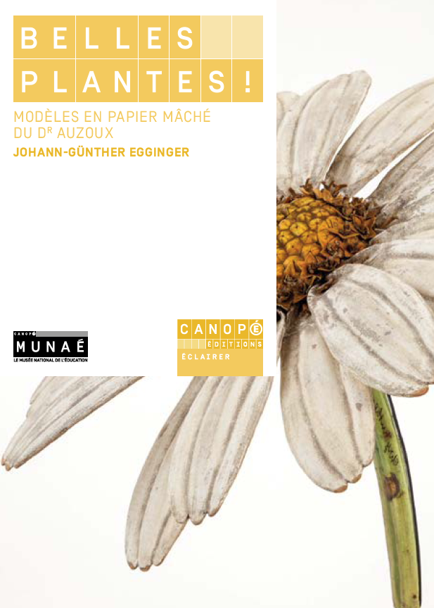 Belles plantes ! Les modèles en papier mâché du Dr Auzoux