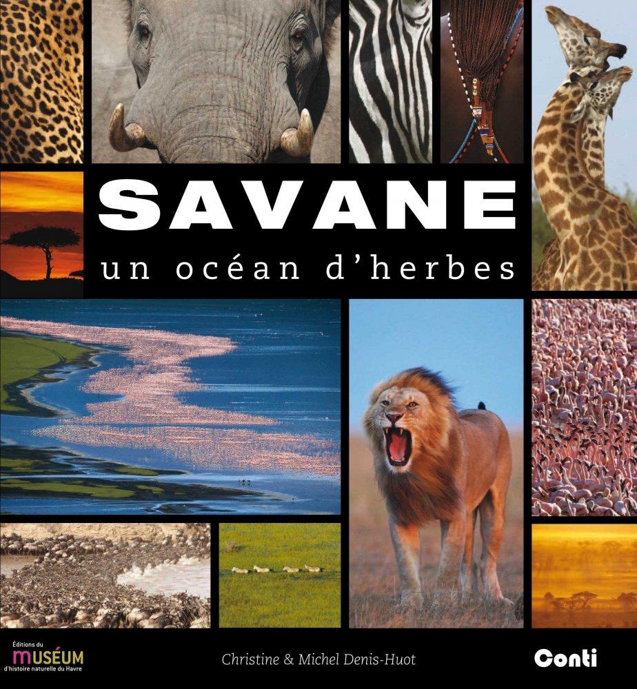 Savane. Un océan d'herbes