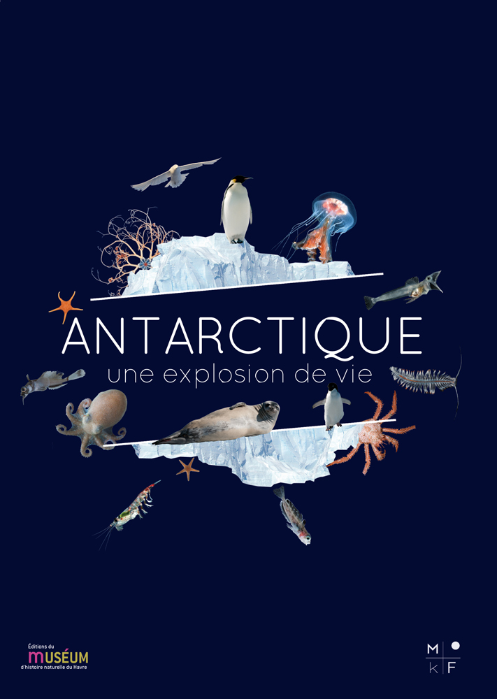 Antarctique. Une explosion de vie