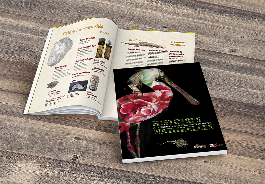 Histoires Naturelles - Collections oubliées du Musée de Dieppe